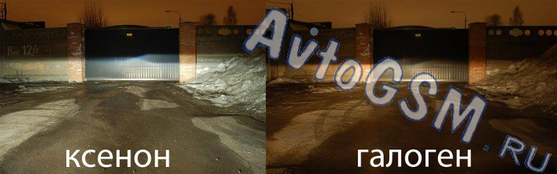 EGO Light H11 5000K от AvtoGSM.ru